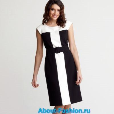 business-dress-2