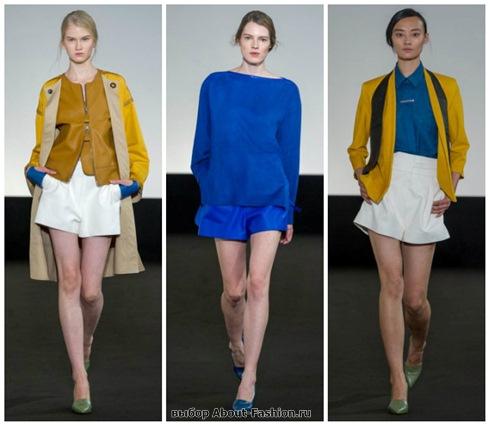 модные шорты 2013-14